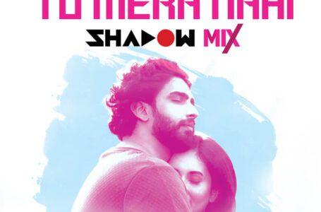 Amaal Mallik & DJ Shadow Dubai give Tu Mera Nahi a party season makeover